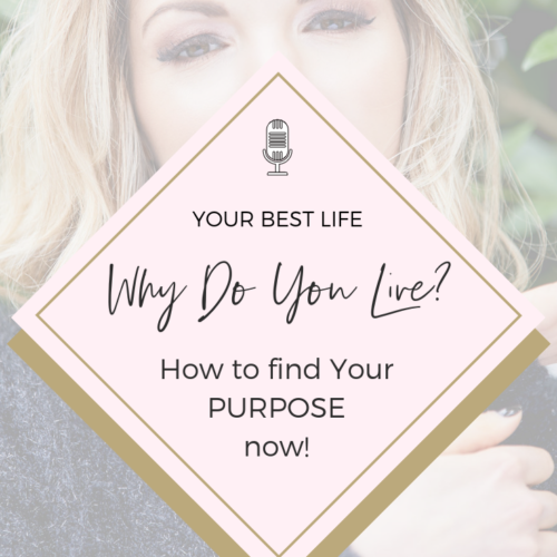 12 | What is Your Purpose? | How to understand the Meaning of Life!